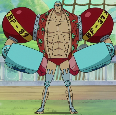 Franky_Anime_Post_Timeskip_Infobox