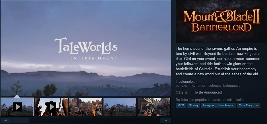 steam-bannerlord