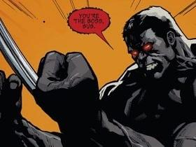 Wolverine Hulk Kombinasyonu