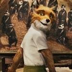 Fantastic Mr. Fox - Yaman Tilki